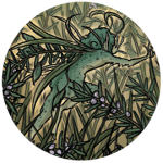 Faery Grass